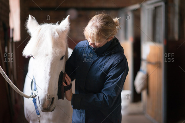 Woman gently brushes her white horse