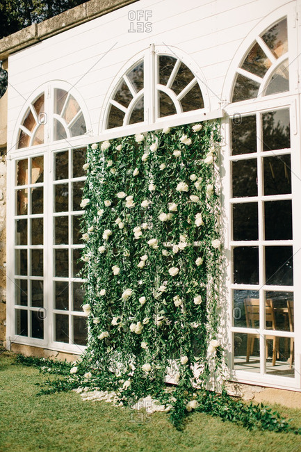 Vine covered arched windows