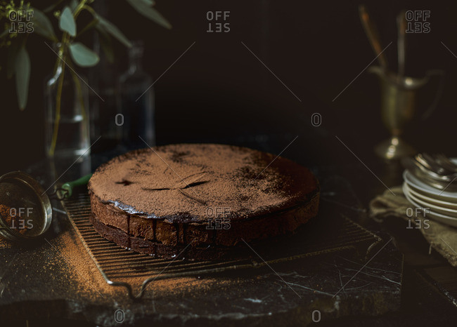 Chocolate cake dusted with cocoa