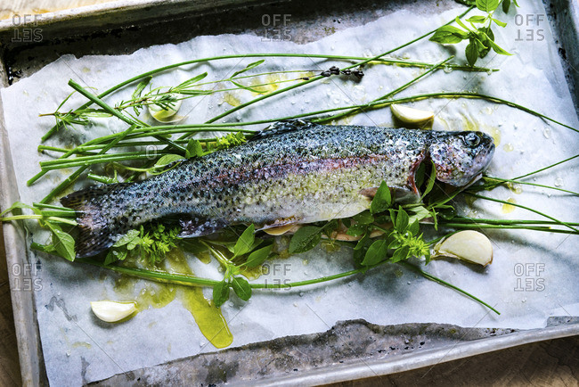 Raw trout with seasonings