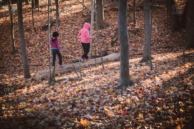 Two kids hiking in an autumn forest