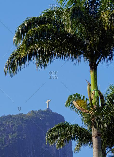Corcovado and Christ statue viewed through the palm trees of the Botanical Garden, Zona Sul, Rio de Janeiro, Brazil, South America