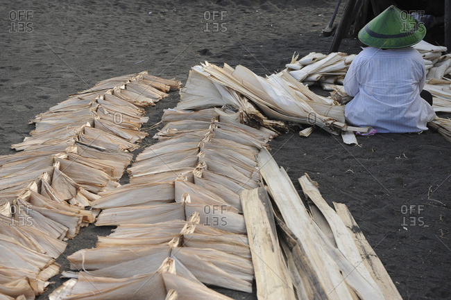 Indonesia, Bali, Crafts, Balinese woman drying bark of banana tree to make albums.