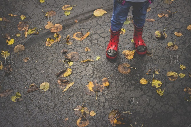 Low section of girl standing on wet road