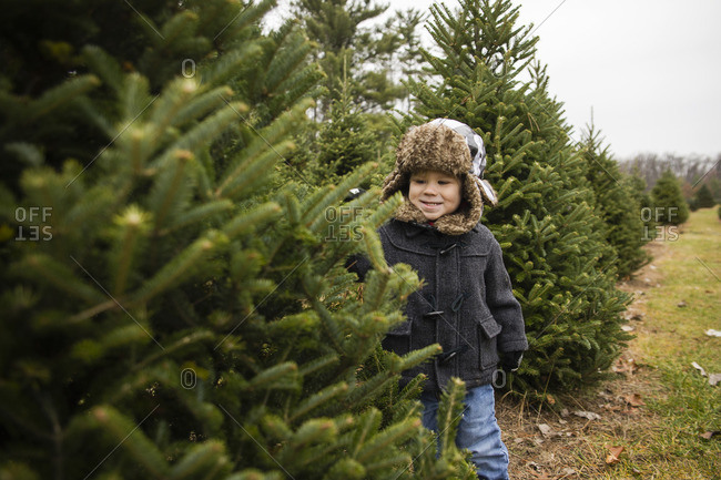 Happy boy looking at pine trees in farm