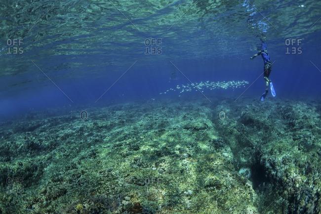Friends enjoying undersea
