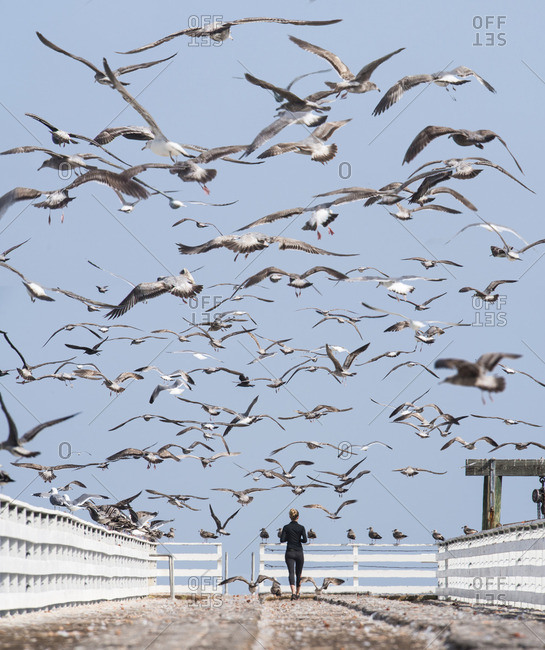 Flock of birds flying over woman standing on pier against sky