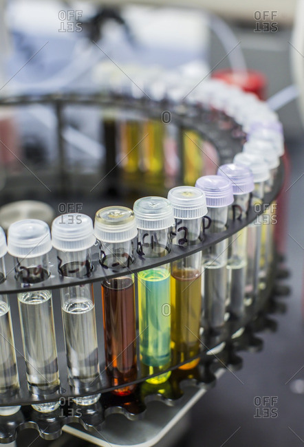 Close-up of test tubes in laboratory