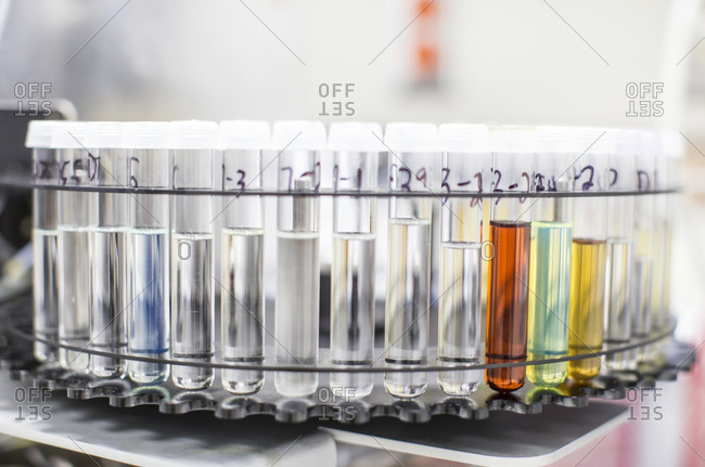 Close-up of test tube rack in laboratory