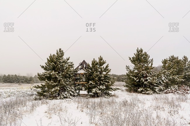 Scenic view of trees on snow covered landscape against clear sky