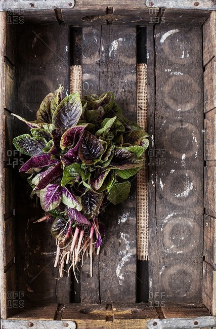 Overhead view of leaf vegetables in wooden crate