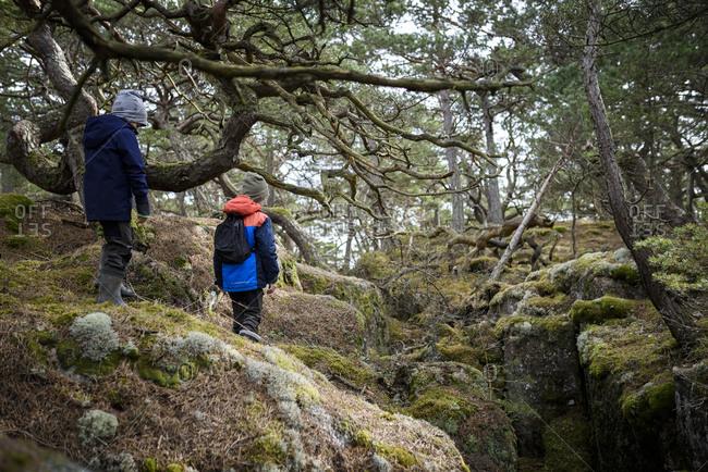 Boys walking through forest