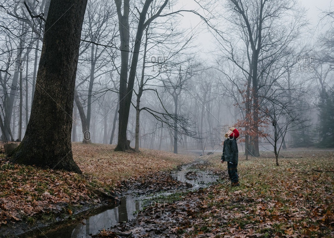 Boy by stream in foggy woods