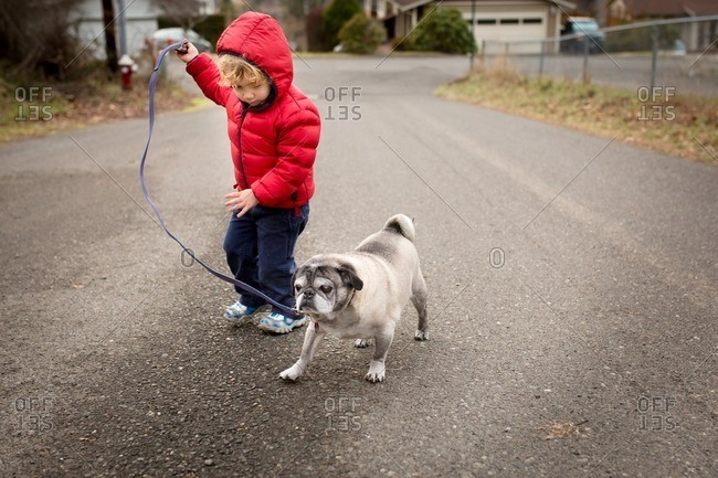 Boy walking with dog in neighborhood