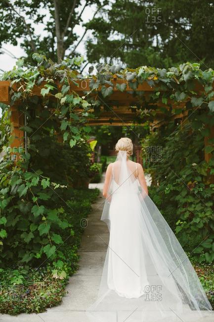 Bride with long veil under trellis