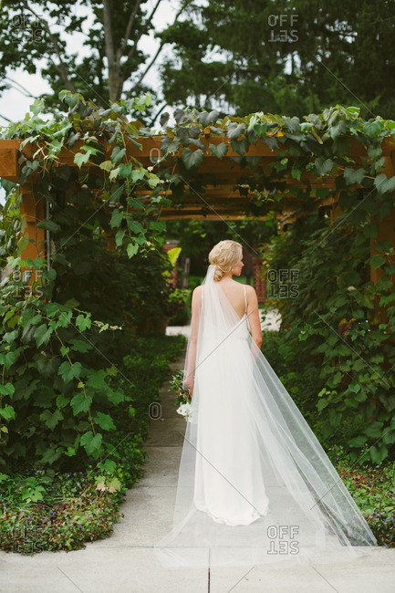 Bride with long veil by vine covered trellis