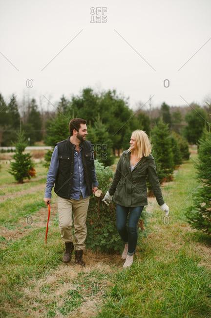 Couple dragging Christmas tree together