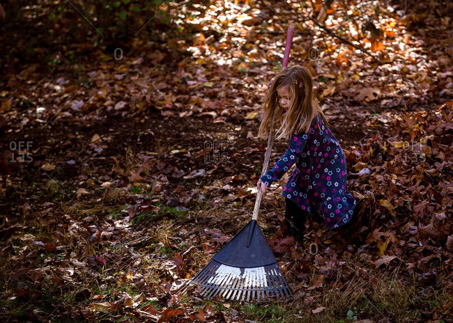 Girl in flowered dress raking leaves