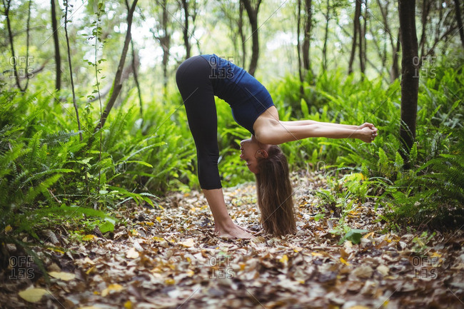 Woman performing yoga in forest on a sunny day