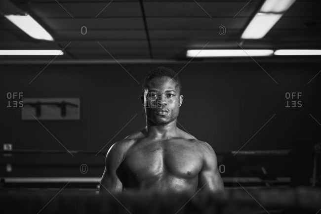 Portrait of male boxer standing in boxing ring