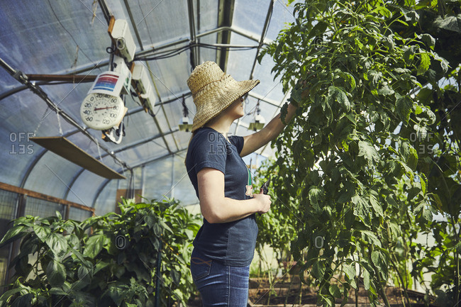 Side view of young woman examining plants in nursery