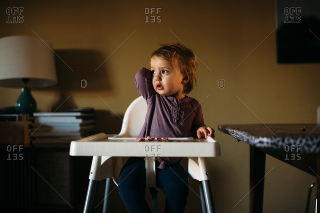 Toddler girl sitting in her high chair having a snack