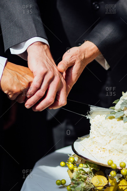 Grooms' hands cutting their cake together