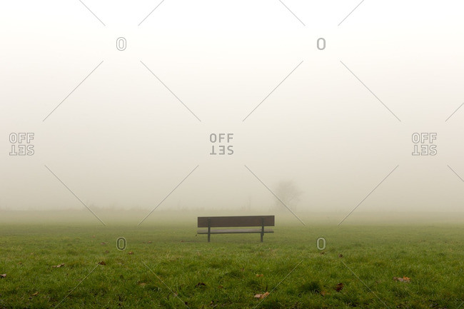 Park bench in fog, England