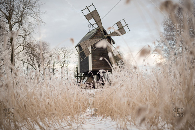 Windmill among a field of ice-covered reeds