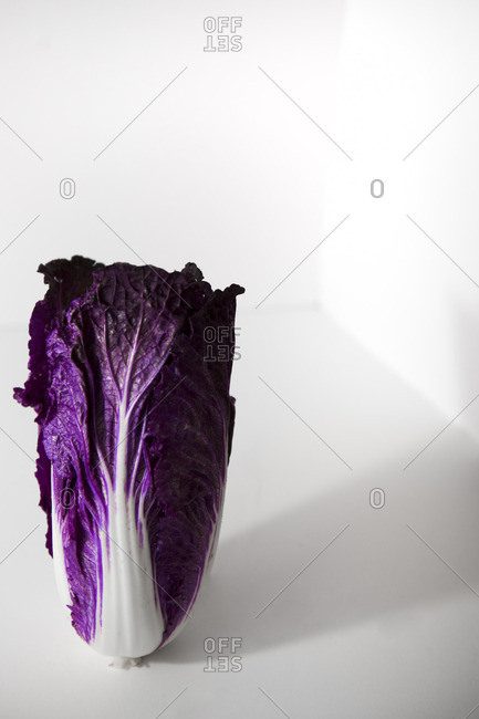 Red Napa Cabbage