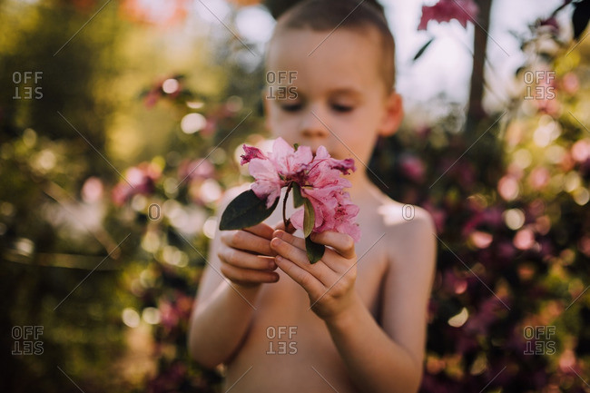 Boy standing outside holding a branch with pink flowers