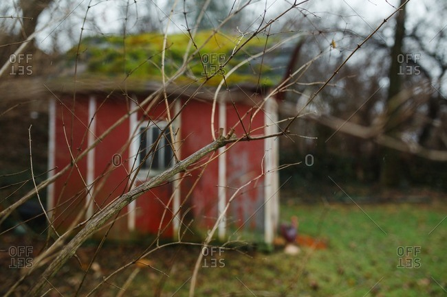 Old garden shed in autumn yard