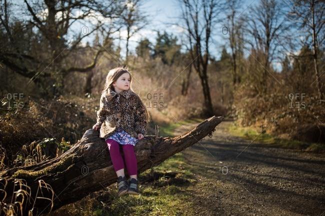 Girl in leopard coat on fallen tree