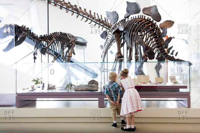 Toronto, Ontario, Canada - July 19, 2013: Girl and boy looking at dinosaur fossils at Royal Ontario Museum