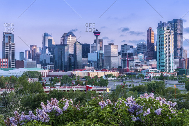 Alberta, Canada - June 12, 2013: The Calgary skyline with the Calgary Tower