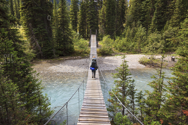 Kootenay National Park, British Columbia, Canada - August 25, 2011: A back packer crosses a suspension bridge over a river
