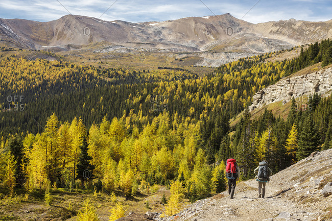 Banff National Park, Alberta Canada - September 18, 2012: Two back packers descend the trail from Baker Lake in the Skoki wilderness area