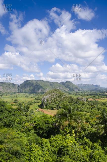 Landscape, Vinales, Cuba - Offset Collection