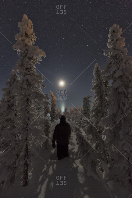 Person standing in the snow surrounded by snow covered trees while looking at the moon, Old Crow, Yukon