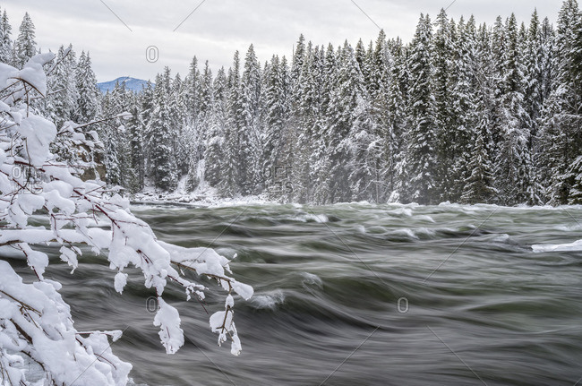 Murtle River in winter in Wells Gray Provincial Park, Clearwater, British Columbia, Canada