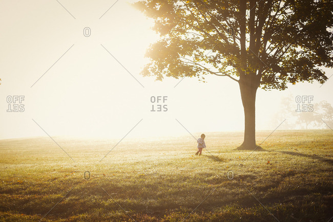 Child runs through foggy field at daybreak