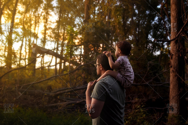 Father and daughter take walk at sunset in a forest