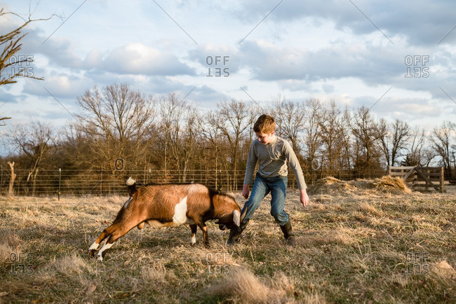Boy playing with a goat in a field