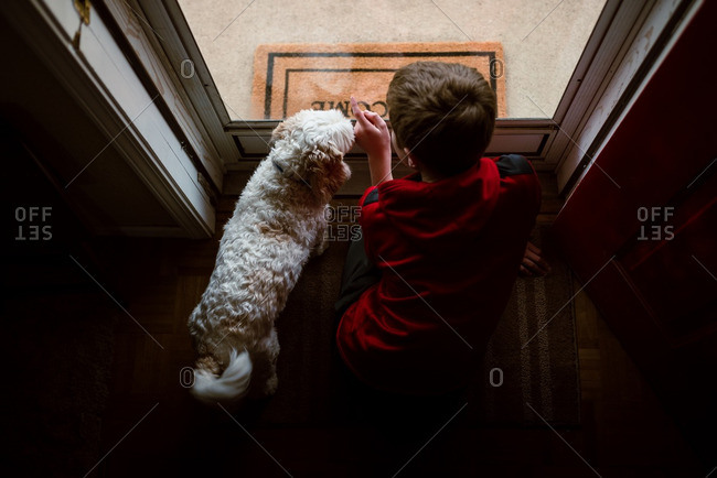 Boy and his pet dog looking out of a glass door
