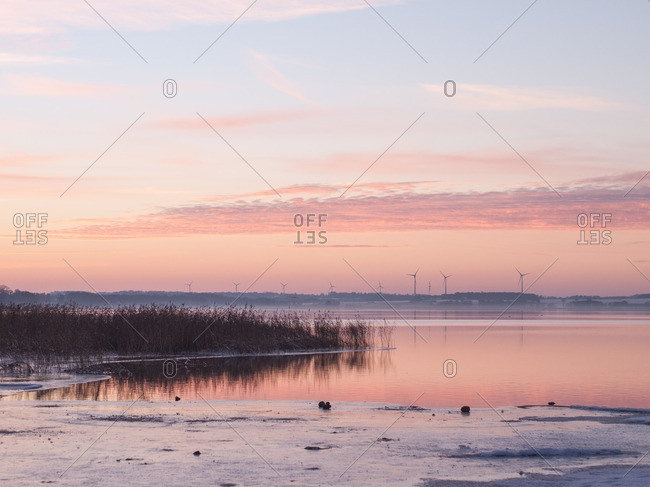 Shore of an icy pond and distant wind turbines at sunrise