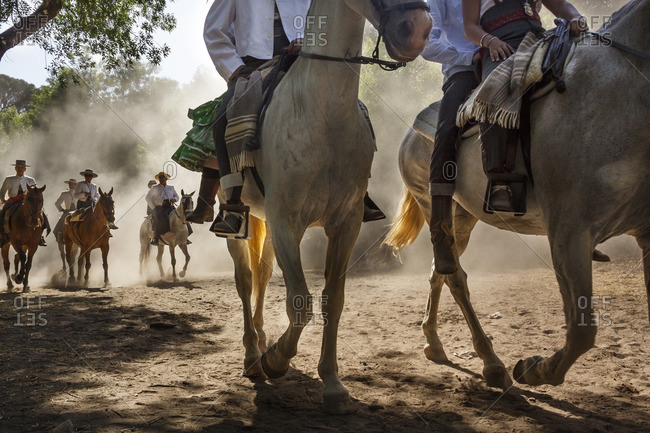 Andalucia, Spain - May 25, 2012: Horses riding through Donana national park in their way to El Rocio