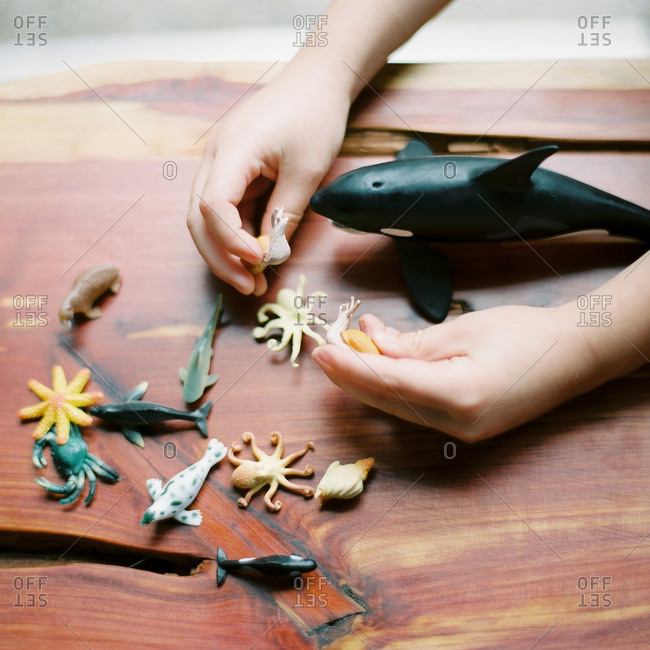 Child playing with small plastic toy animals