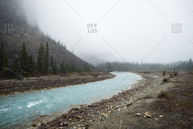 River of glacial run-off passes through tree-lined mountain valley