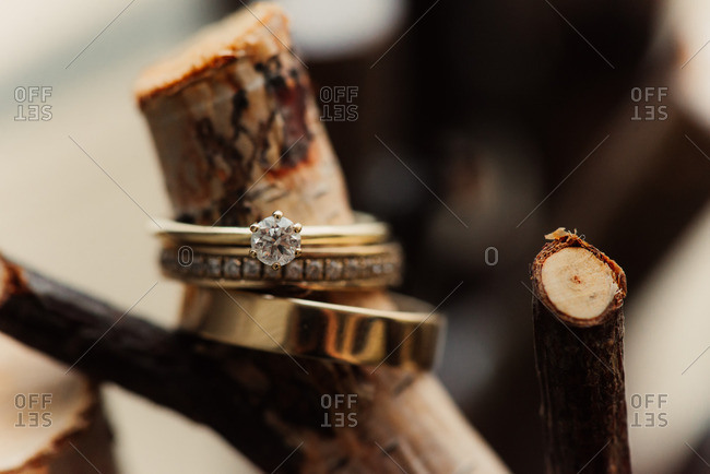 Wedding bands on a branch