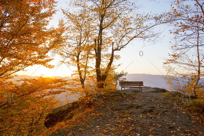 Empty bench in the autumn during sunset in Krems